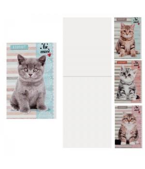 Блокнот А7 (65*100) 16л скоба обл мягк карт Мои котята Б16-5254 ассорти 4 вида