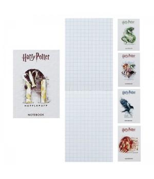 Блокнот А7 (65*100) 48л склейка обл мягк карт Гарри Поттер глянц лам 48Б7В1к ассорти 5 видов