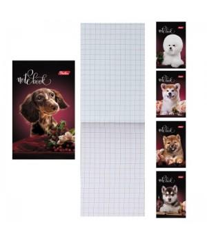 Блокнот А7 (65*100) 48л склейка обл мягк карт Собачки глянц лам 48Б7С1 упак 5 вид