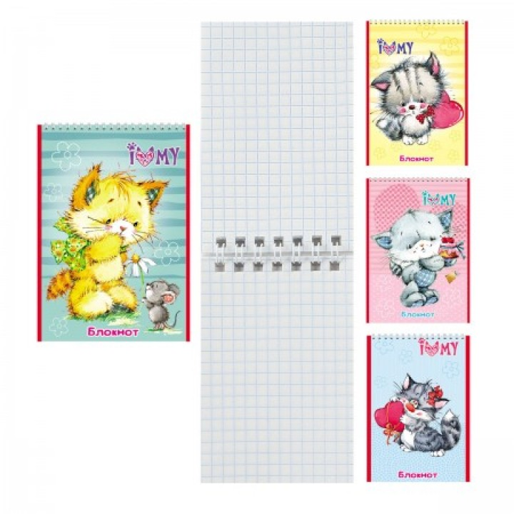 Блокнот А7 (65*100) 40л дв спир обл мягк карт Плюшевые котята Б40-7752