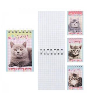 Блокнот А7 (65*100) 40л дв спир обл мягк карт Котята Б40-7756 ассорти 4 вида