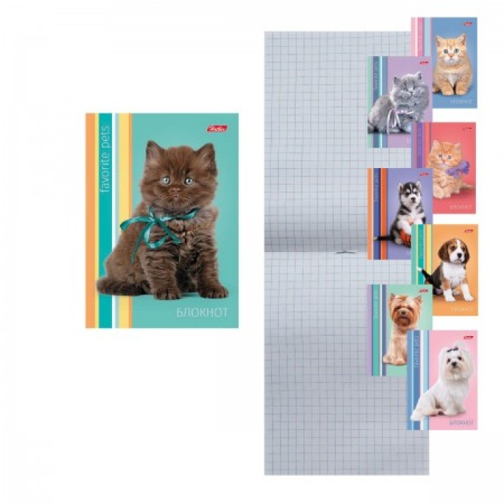Блокнот А6 (105*145) 24л скоба обл мягк карт Наши друзья глянц лам 24Б6С1 ассорти 8 видов