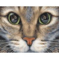 Взгляд охотника Раскраска картина по номерам на холсте GX31984