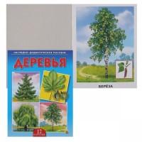 Наглядно-дидактическое пособие Деревья ПД-6875